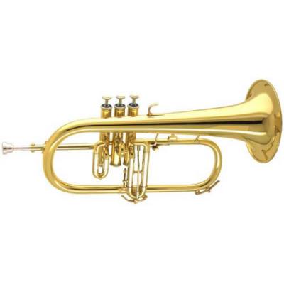 أدوات الفرقة الموسيقية للاحتفالات العالمية BBICO