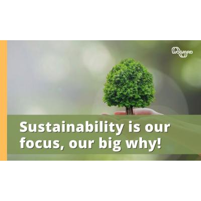 Bæredygtighed stor hvorfor