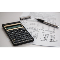budgettering og budgetkontrol i den offentlige sektor fra HB Publikationer