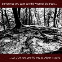 Schuldner Tracing erfordert Fachkenntnisse, guter Zugang zu Informationen und Erfahrungen. Bei CLI haben wir dieses Know-how für den britischen Markt und wir haben unsere eigenen Tracing-Techniken über einen Zeitraum von 20 Jahren entwickelt. Wenn Sie Kontakt mit Ihrem Schuldner verloren haben, werden wir Ihnen helfen, sie zu finden und sammeln die Schulden, die sie Sie verdanken.