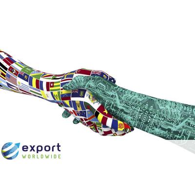 Export weltweit Was ist Hybridübersetzung?