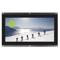 10.1-inch open frame monitor front view.