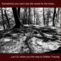 Debtor Tracing requires special skills, good access to information and experience. At CLI we have this know-how for the UK market and we have developed our own tracing techniques over a 20 year period. If you have lost touch with your debtors, we will help you find them and collect the debt they owe you.