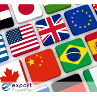 Marketing translation services provided by ExportWorldwide