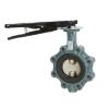 Butterfly valve types