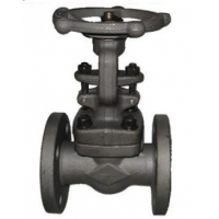 Carbon Steel Globe Valve Stockist 2
