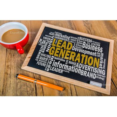 generación de leads en línea internacional