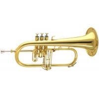 instruments de fanfare pour les célébrations internationales BBICO