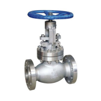 Acier Globe Valve Supplier 2
