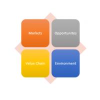 इंटरएलाइज़िस, व्यापार डेटा विश्लेषण रिपोर्ट
