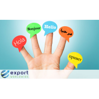 Export Worldwide adalah platform SEO global