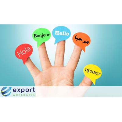 Export Worldwide is een wereldwijd SEO-platform