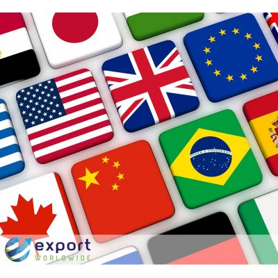 Marketing vertaaldiensten aangeboden door ExportWorldwide