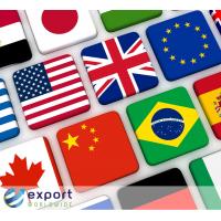 Markedsføring oversettelsestjenester levert av ExportWorldwide