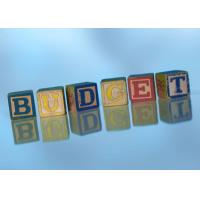 Offentlig budsjettering